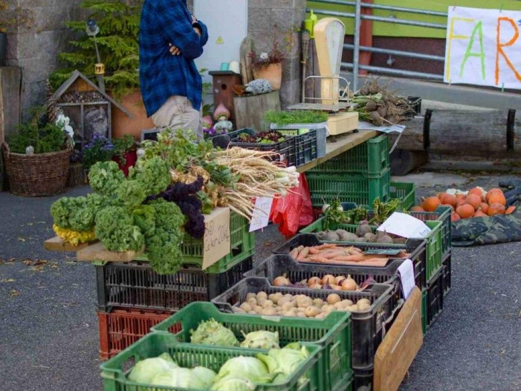 Farmářské trhy 2
