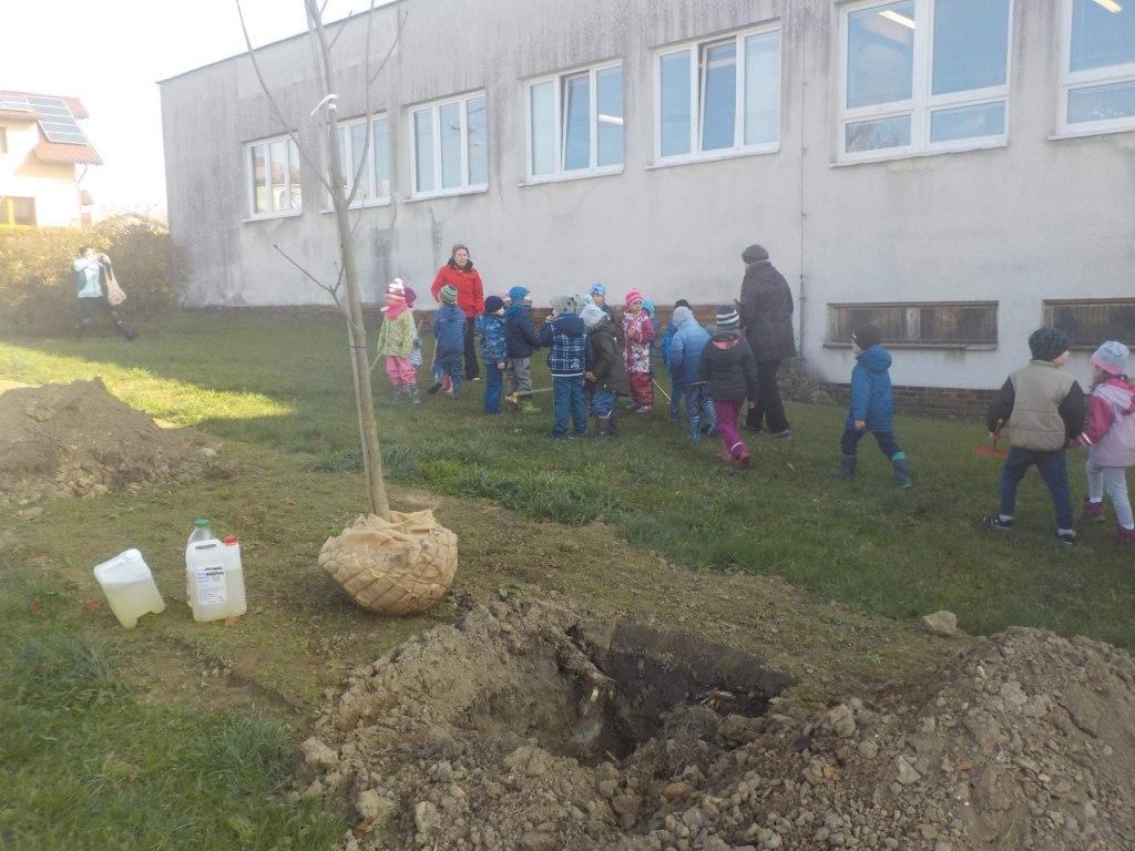Sázení stromů u Jednoty 1